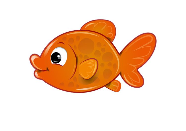 goudvis-30289 (1)